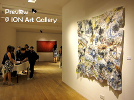 ION Gallery